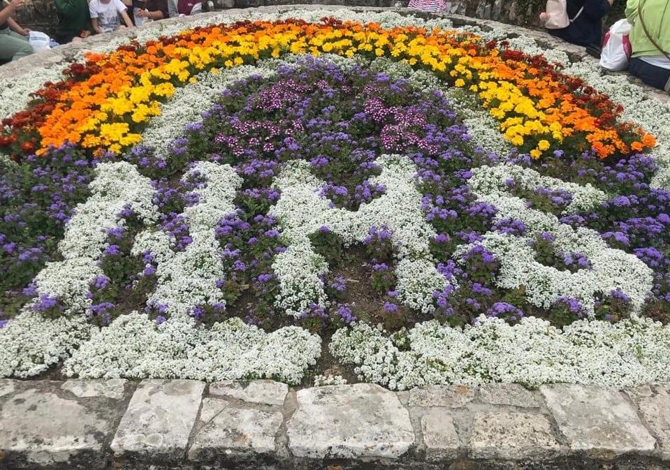 NHS Flower Bed